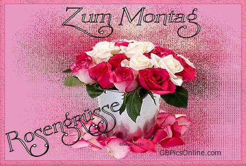 Zum Montag Rosengrüße.