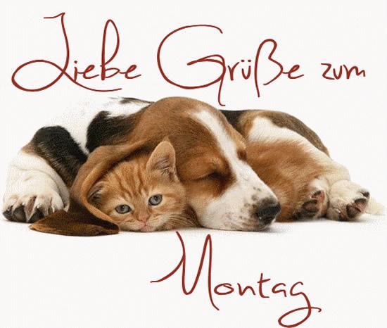 Liebe Grüße zum Montag