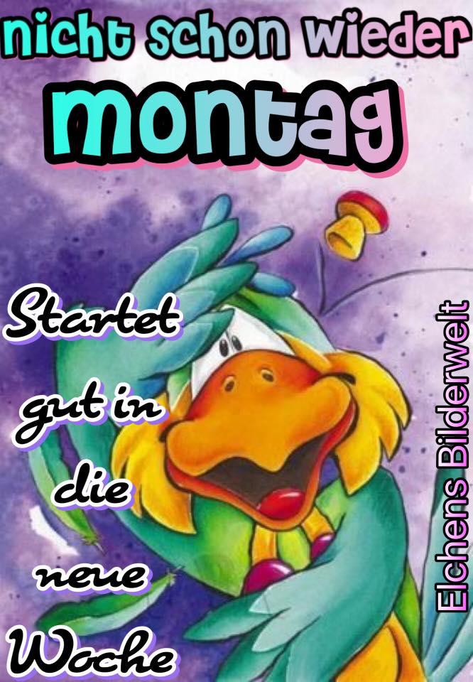 Nicht schon wieder Montag...