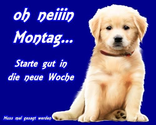 Oh neiiin Montag... Starte gut...