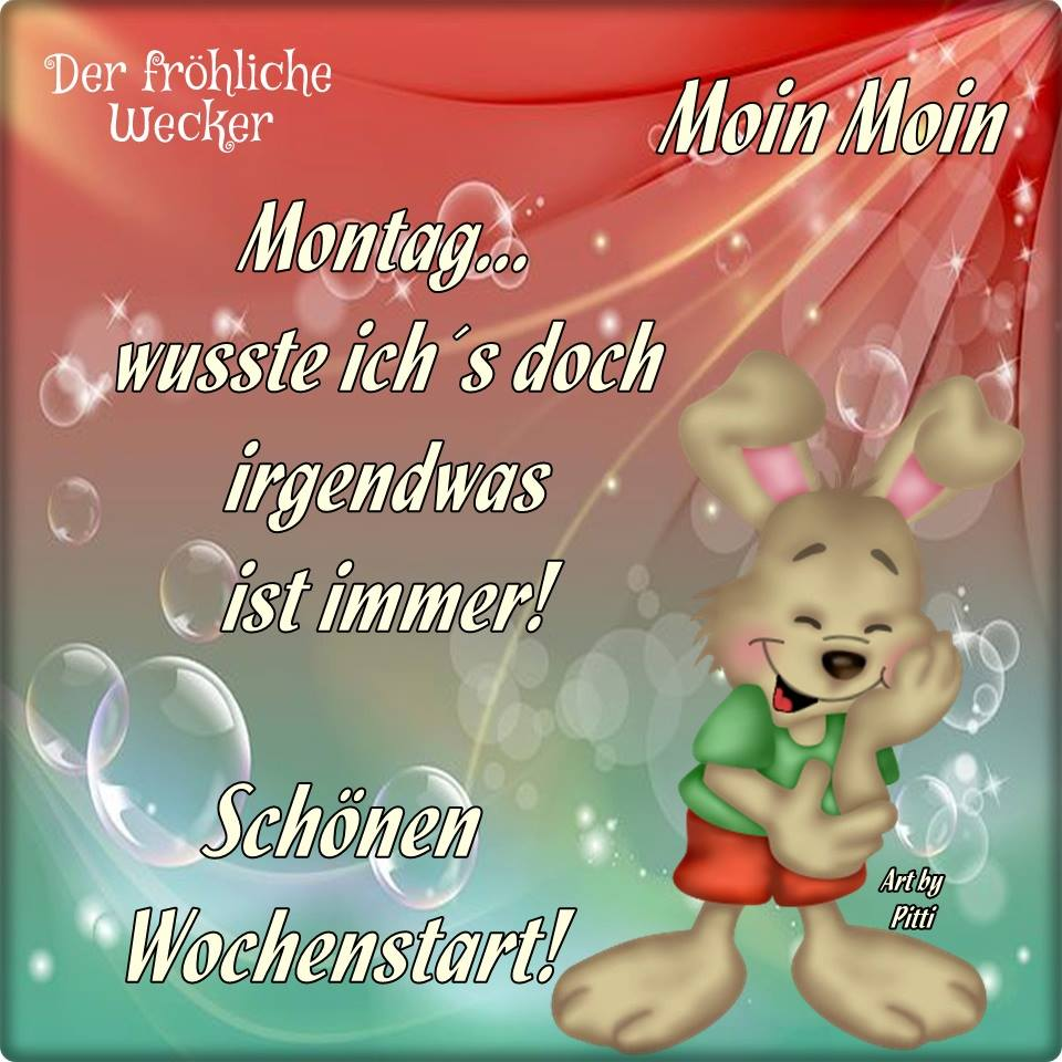 Moin Moin. Montag... wusste ich's doch...