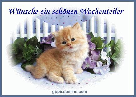 Wünsche ein schönen...