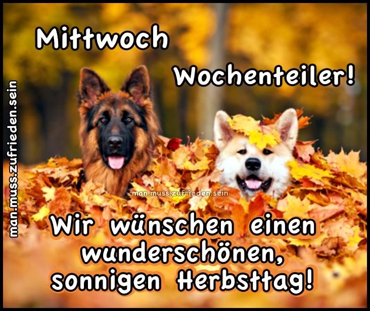 Mittwoch Wochenteiler! Wir wüschen einen wunderschönen, sonnigen Herbsttag!