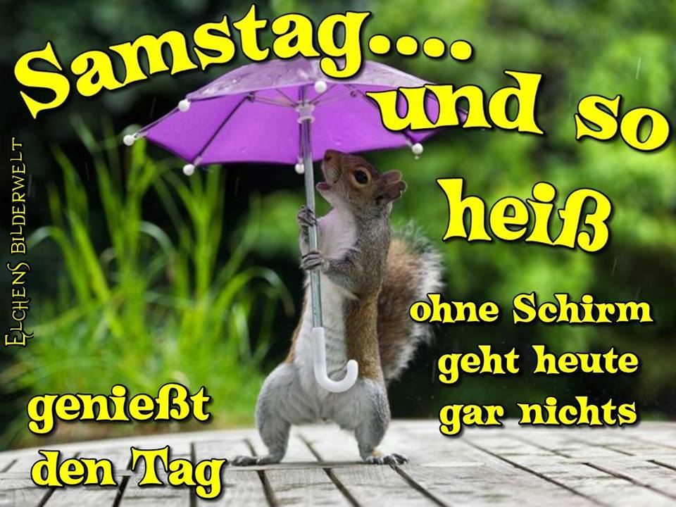 Samstag... und so heiß. Ohne Schirm...