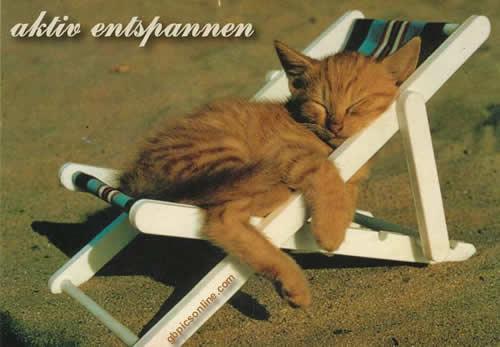 Aktiv entspannen