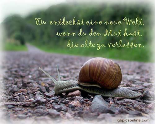 Du entdeckst eine neue Welt, wenn du den...