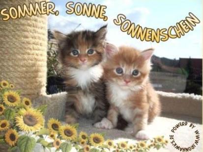 Sommer Bilder - Sommer GB Pics (Seite 10) - GBPicsOnline