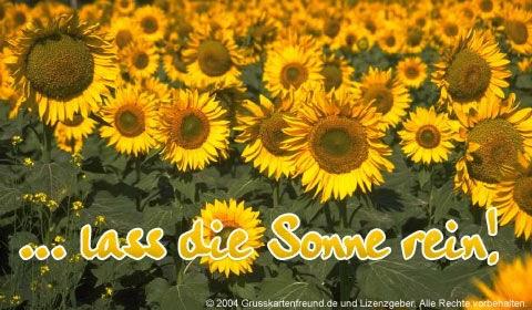 Sonne bild 6