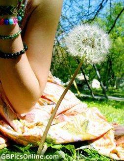 Sommer bild 3