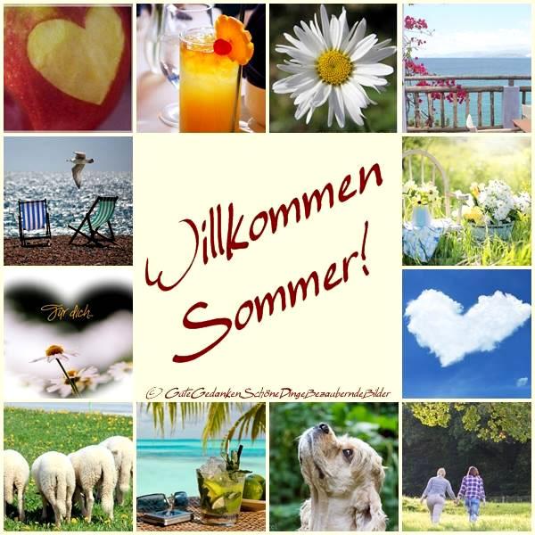 Sommer bild 1