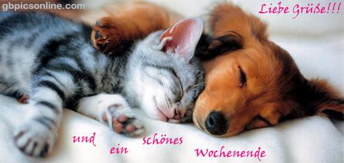 Liebe Grüße!!! und ein schönes...