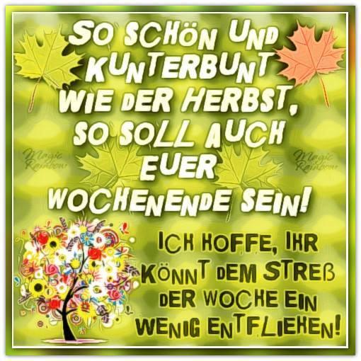 So schön und kunterbunt wie der Herbst, so soll auch euer Wochende sein! Ich hoffe, ihr könnt dem Stress der Woche ein...