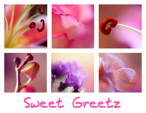 Sweet Greetz