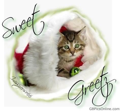 Sweet Greetz