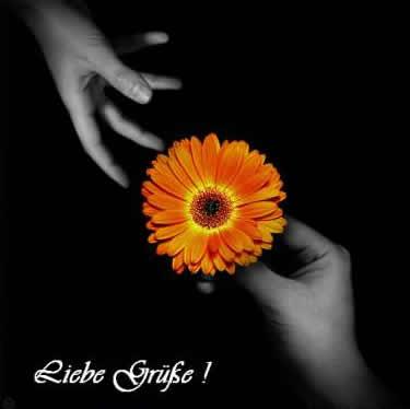 Liebe Grüße bild 5