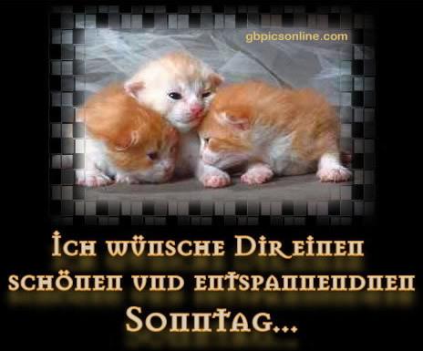 An den Beitrag angehängtes Bild: http://img1.gbpicsonline.com/gb/37/091.jpg