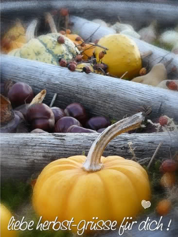 Liebe Herbst-Grüße für dich!