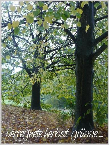 Verregnete Herbst-Grüße...