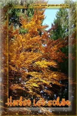 Herbst ist schön.
