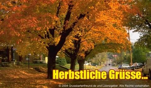 Herbst bild 5