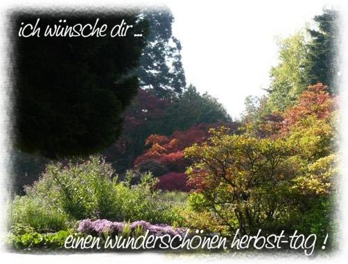 Ich wünsche dir... einen wunderschönen Herbsttag!