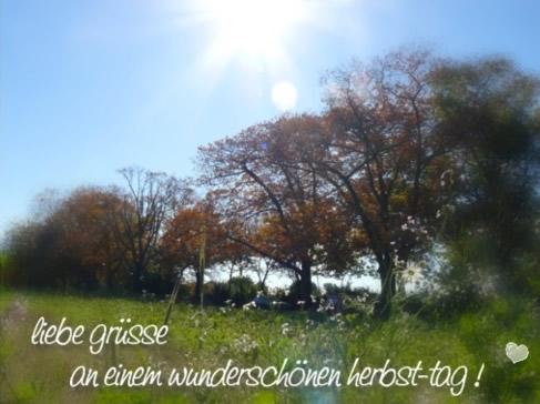 Herbst bild 2