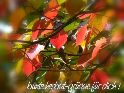 Bunte Herbst-Grüße für dich!