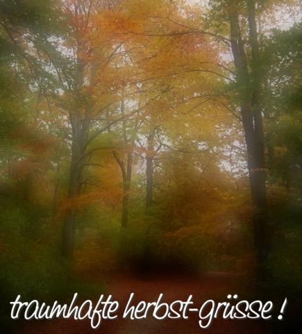 Herbst bild 1