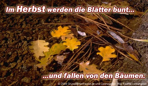 Im Herbst werden die...
