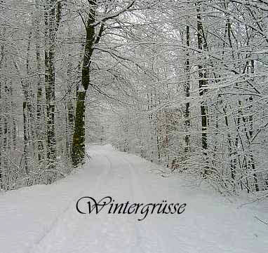 Winter bild 2