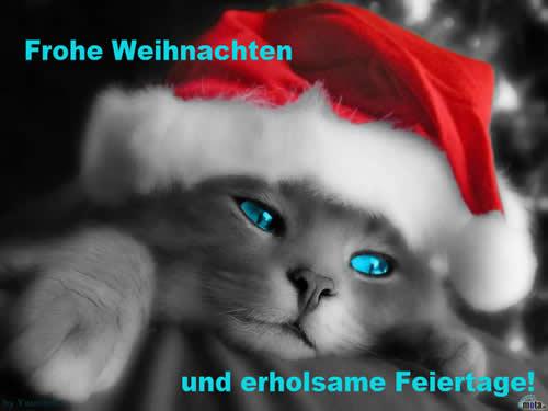Frohe Weihnachten und...