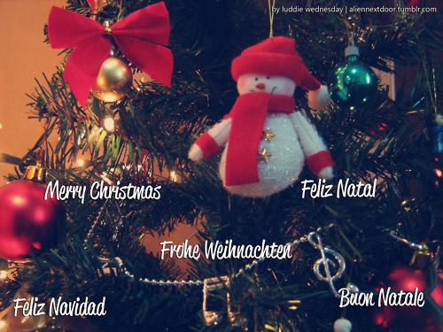 Merry Christmas. Feliz Natal. Frohe...