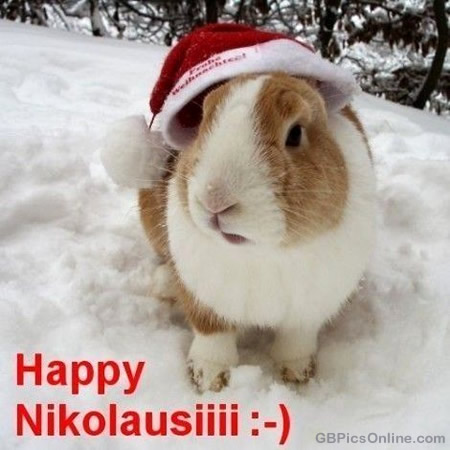Happy Nikolausiii :-)