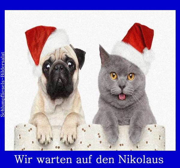 Wir warten auf den Nikolaus.