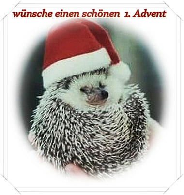 Bildergebnis für Bilder Zum Advent Lustig