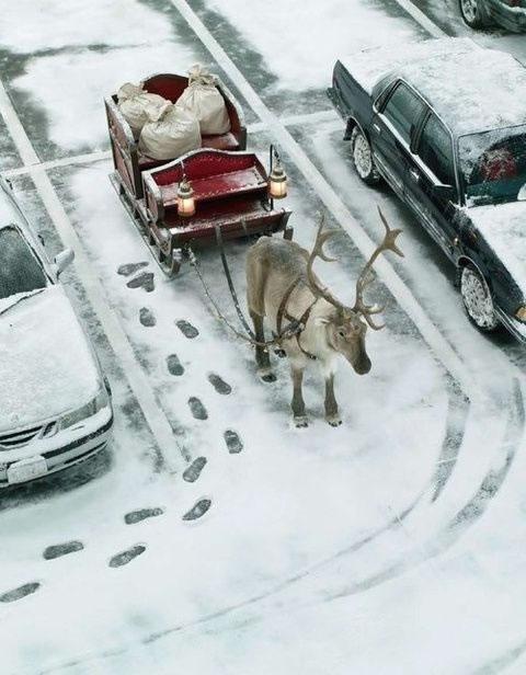 Lustiges zu Weihnachten bild #23635