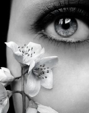 Augen bild 14