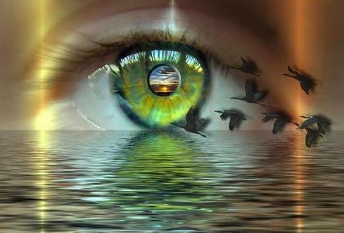 Augen bild 6