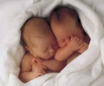 Zwei Babys kuscheln in einer...