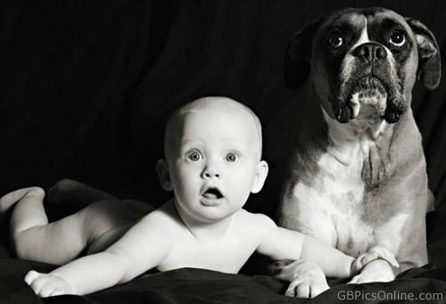 Die Blicke von Baby und Hund...