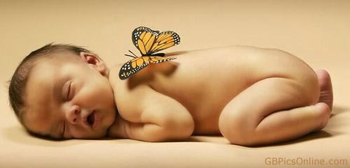 Schmetterling landet auf schlafendem...