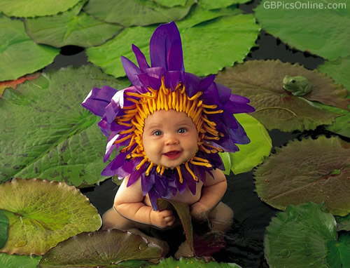 Blumenbaby in der Natur