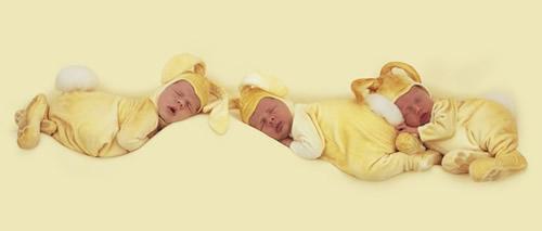 Drei Babys in gelben...