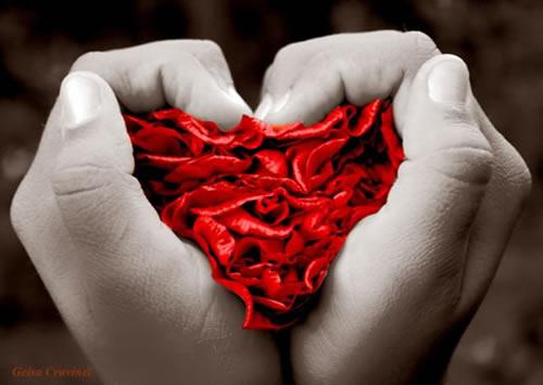 Das Herz in den Händen