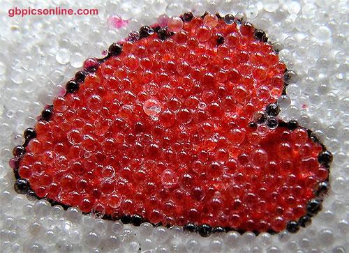 Herz im Blasenmeer
