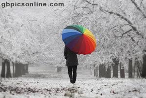 Regenbogen bild 9