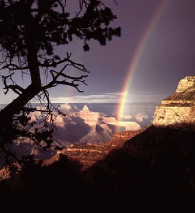 Regenbogen bild 10