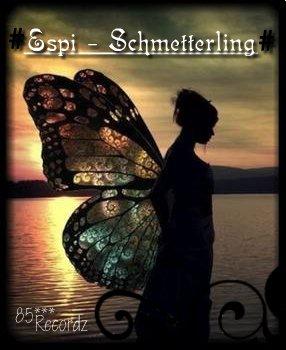 Schmetterlinge 9