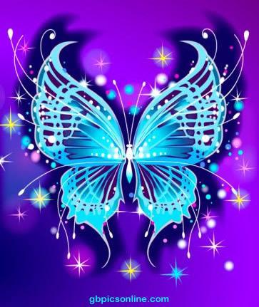 Schmetterlinge bild 10