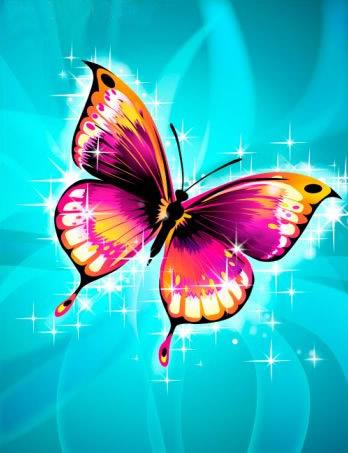 Schmetterlinge bild 11